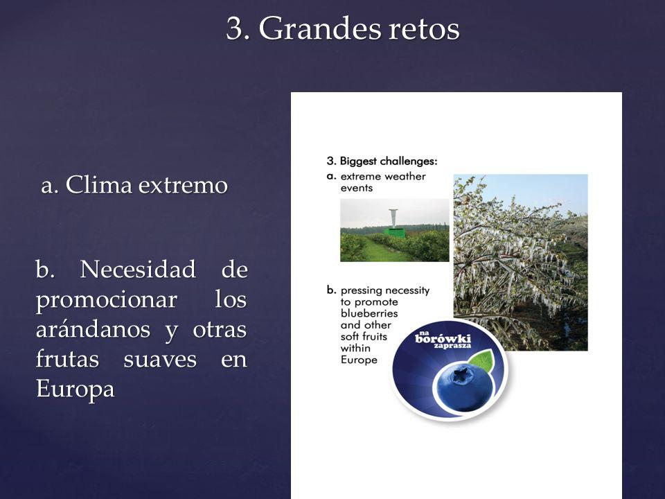 3. Grandes retos a. Clima extremo b. Necesidad de promocionar los arándanos y otras frutas suaves en Europa