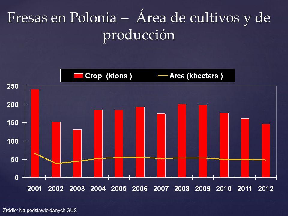Fresas en Polonia – Área de cultivos y de producción Źródło: Na podstawie danych GUS.