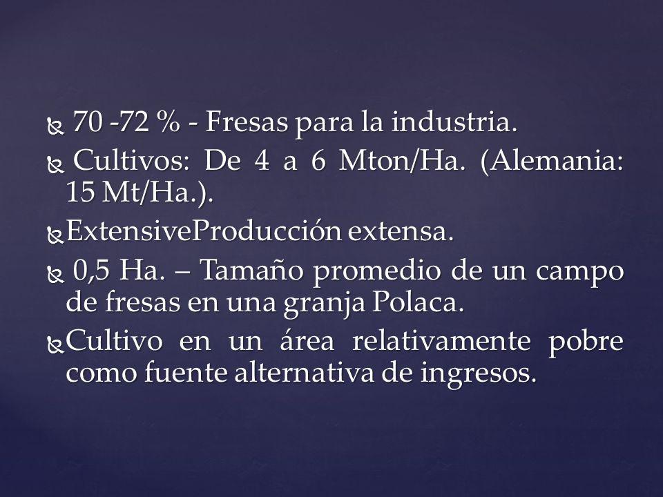 70 -72 % - Fresas para la industria. 70 -72 % - Fresas para la industria. Cultivos: De 4 a 6 Mton/Ha. (Alemania: 15 Mt/Ha.). Cultivos: De 4 a 6 Mton/H