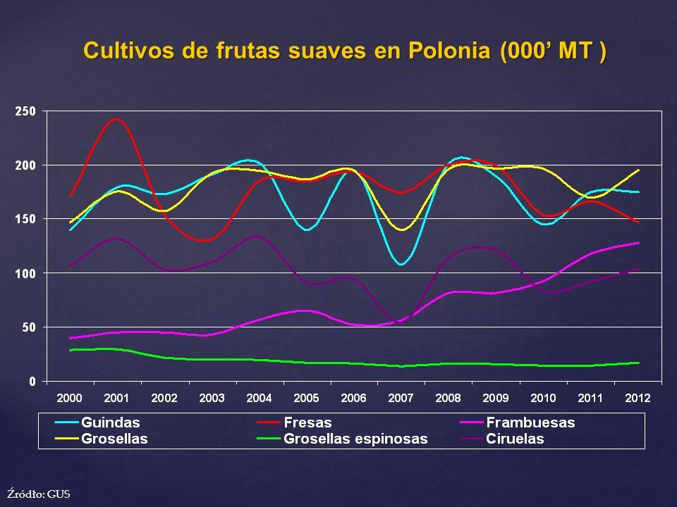 Cultivos de frutas suaves en Polonia (000 MT ) Cultivos de frutas suaves en Polonia (000 MT ) Źródło: GUS