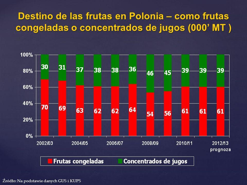 Destino de las frutas en Polonia – como frutas congeladas o concentrados de jugos (000 MT ) Źródło: Na podstawie danych GUS i KUPS