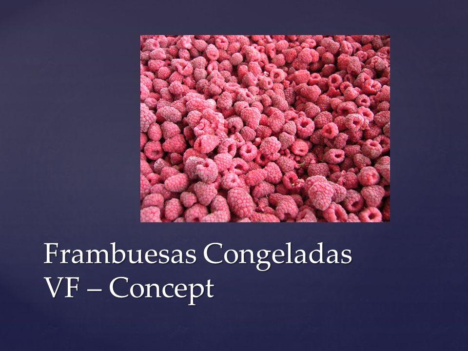 Frambuesas Congeladas VF – Concept