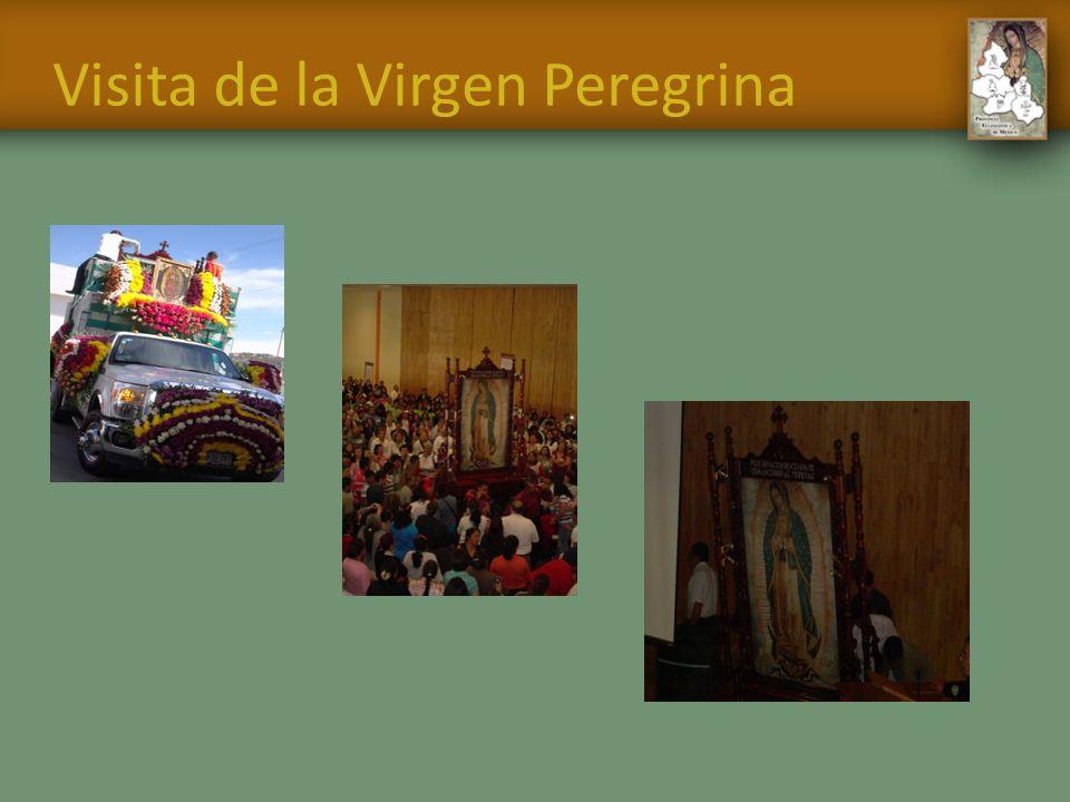 Visita de la Virgen Peregrina