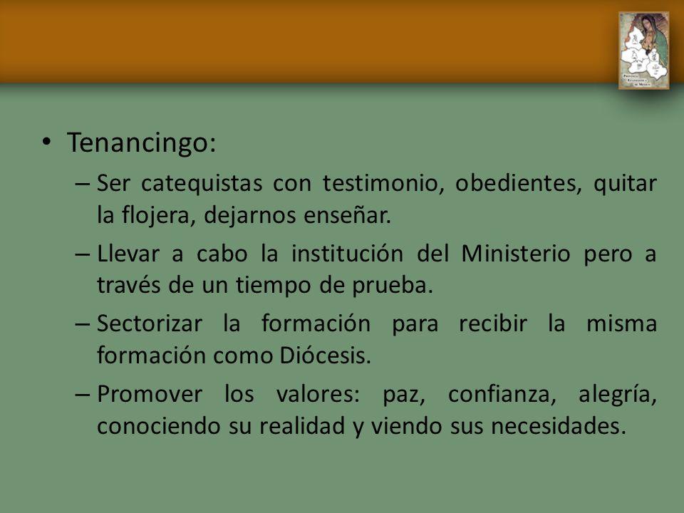 Tenancingo: – Ser catequistas con testimonio, obedientes, quitar la flojera, dejarnos enseñar. – Llevar a cabo la institución del Ministerio pero a tr