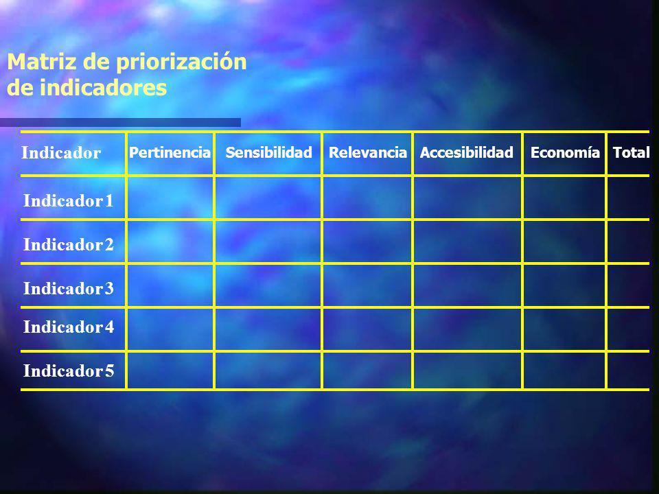 Criterios de priorizacion y selección de indicadores Economía Costo de recolección de la información Accesibilidad Fácil acceso a la información Relev