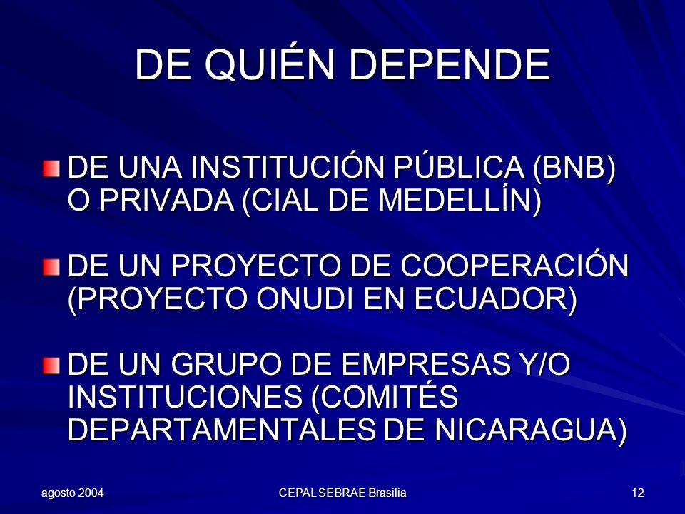 agosto 2004 CEPAL SEBRAE Brasilia 12 DE QUIÉN DEPENDE DE UNA INSTITUCIÓN PÚBLICA (BNB) O PRIVADA (CIAL DE MEDELLÍN) DE UN PROYECTO DE COOPERACIÓN (PRO