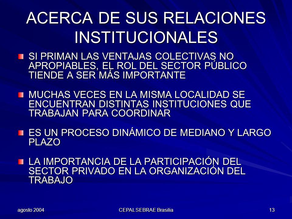 agosto 2004 CEPAL SEBRAE Brasilia 13 ACERCA DE SUS RELACIONES INSTITUCIONALES SI PRIMAN LAS VENTAJAS COLECTIVAS NO APROPIABLES, EL ROL DEL SECTOR PÚBL