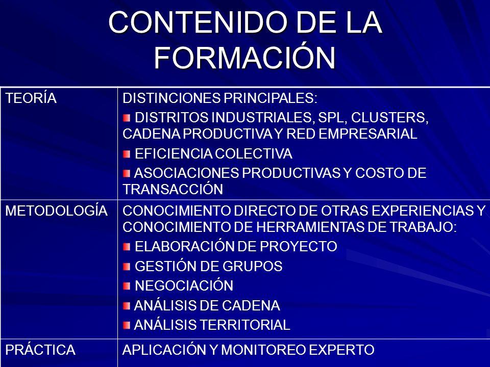 CONTENIDO DE LA FORMACIÓN TEORÍADISTINCIONES PRINCIPALES: DISTRITOS INDUSTRIALES, SPL, CLUSTERS, CADENA PRODUCTIVA Y RED EMPRESARIAL EFICIENCIA COLECT