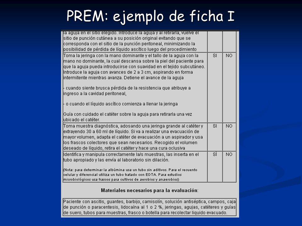 PREM: ejemplo de ficha I