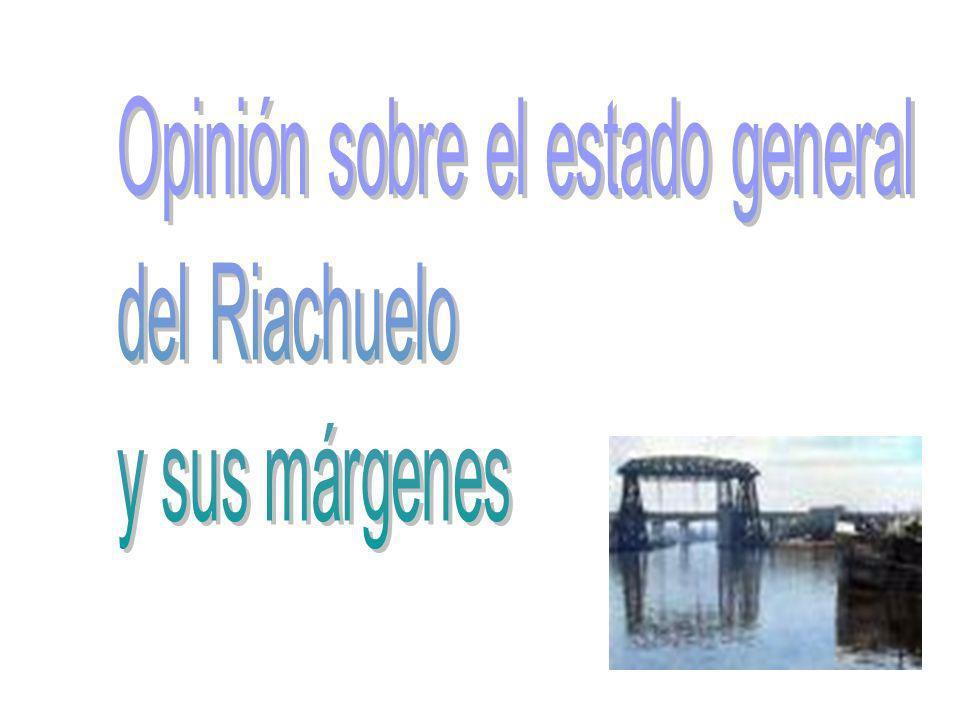 ¿La situación del Riachuelo puede perjudicar el medio ambiente.