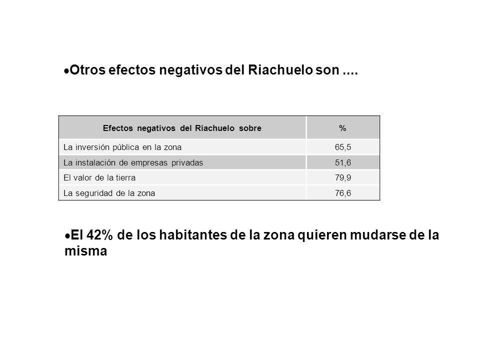 Otros efectos negativos del Riachuelo son.... Efectos negativos del Riachuelo sobre% La inversión pública en la zona65,5 La instalación de empresas pr