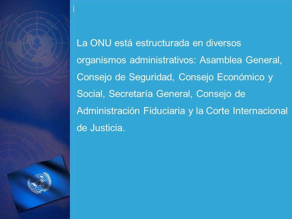 Desde su sede en Nueva York, los Estados miembros de las Naciones Unidas y otros organismos vinculados proporcionan consejo y deciden acerca de temas