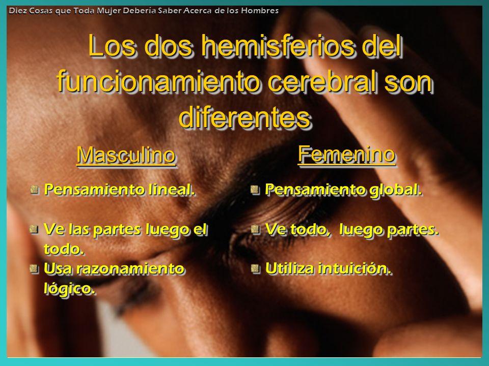 Los dos hemisferios del funcionamiento cerebral son diferentes Los dos hemisferios del funcionamiento cerebral son diferentes MasculinoMasculino Pensa
