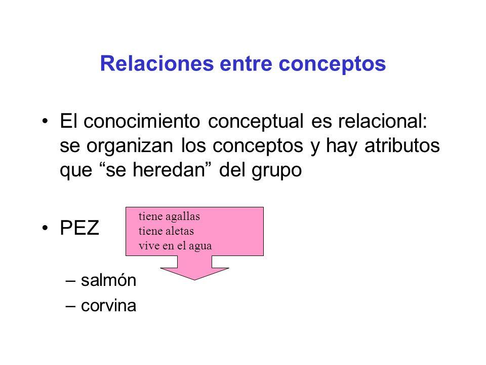 Relaciones entre conceptos El conocimiento conceptual es relacional: se organizan los conceptos y hay atributos que se heredan del grupo PEZ –salmón –