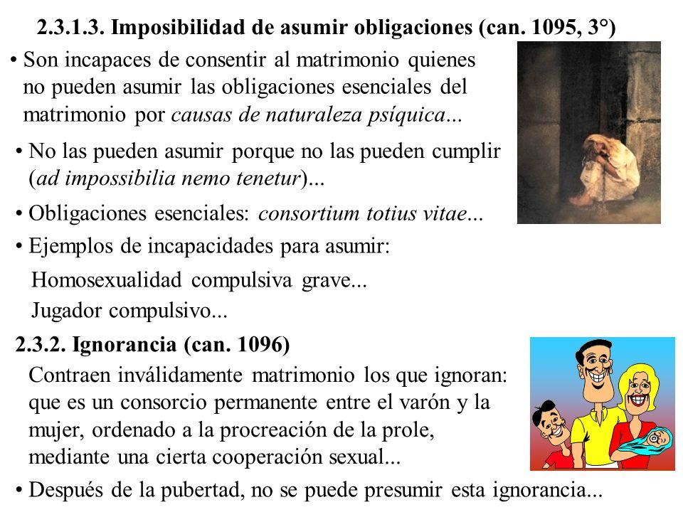 2.3.1.3. Imposibilidad de asumir obligaciones (can. 1095, 3°) Son incapaces de consentir al matrimonio quienes no pueden asumir las obligaciones esenc