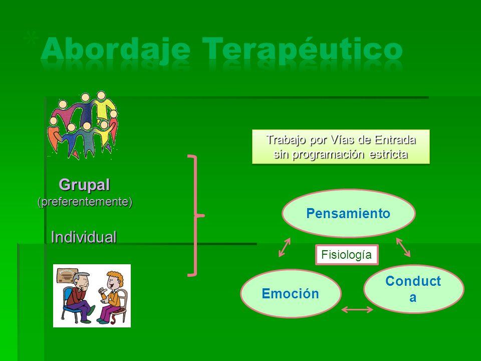 Grupal (preferentemente) Individual Trabajo por Vías de Entrada sin programación estricta Fisiología Pensamiento Emoción Conduct a