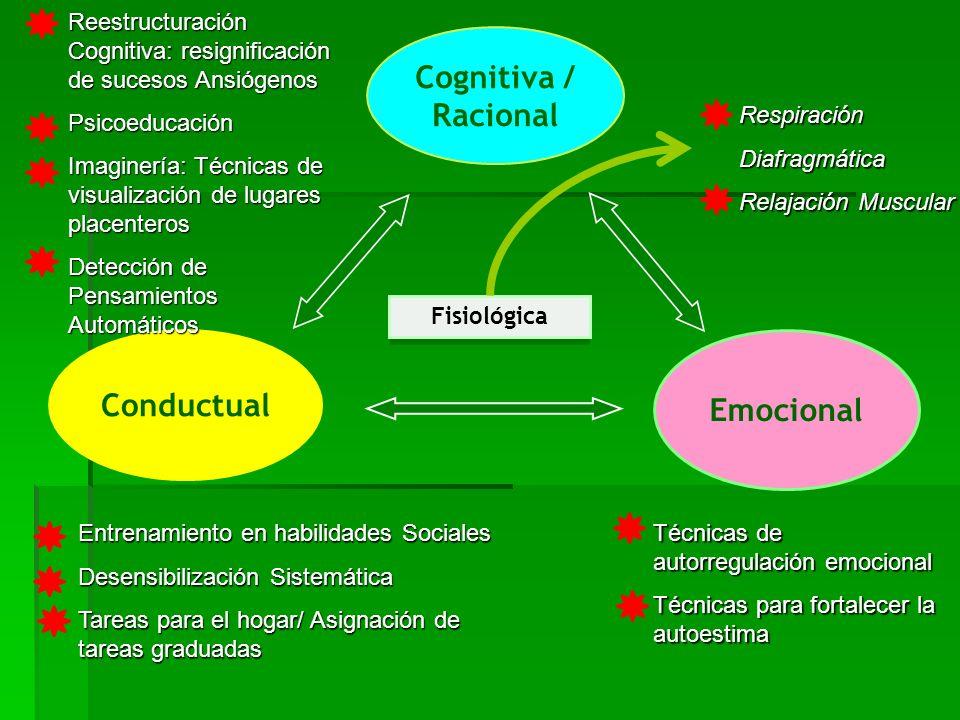 Cognitiva / Racional Conductual Emocional Fisiológica Reestructuración Cognitiva: resignificación de sucesos Ansiógenos Psicoeducación Imaginería: Téc