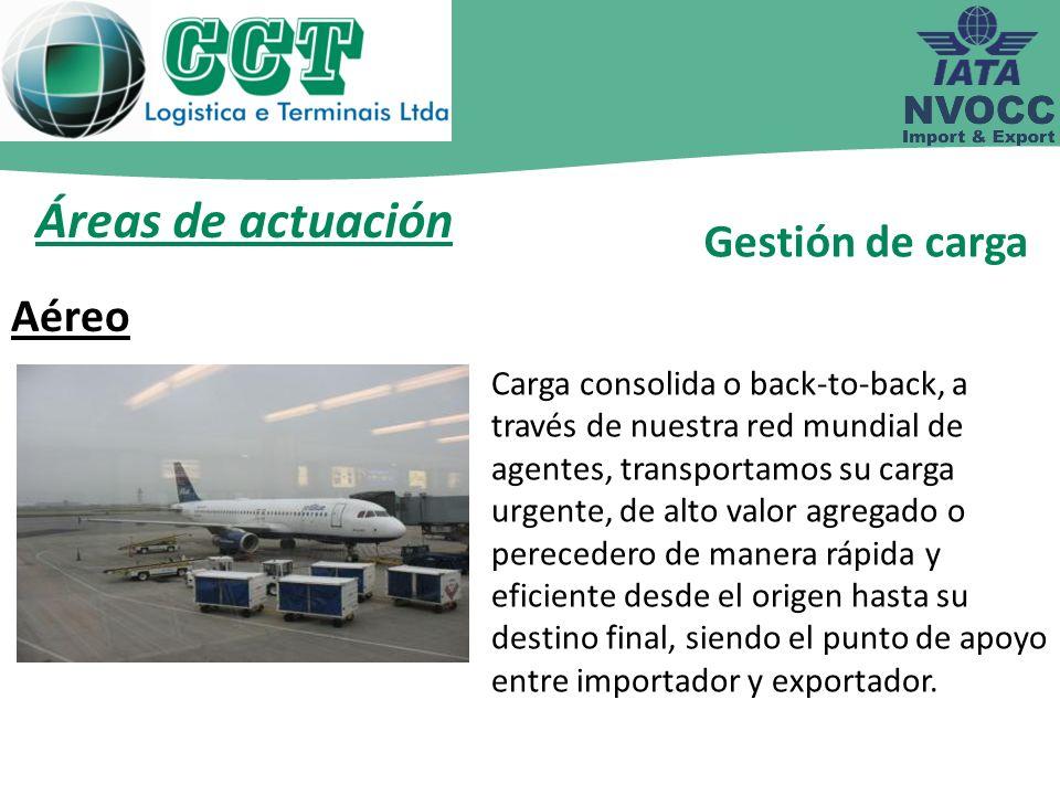 Áreas de actuación Cargas consolidadas LCL o FCL en la importación y exportación, ofrecemos un servicio completo desde el origen hasta el destino final en cualquier parte del mundo.
