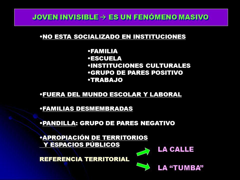 JOVEN INVISIBLE ES UN FENÓMENO MASIVO NO ESTA SOCIALIZADO EN INSTITUCIONES FAMILIA ESCUELA INSTITUCIONES CULTURALES GRUPO DE PARES POSITIVO TRABAJO FU