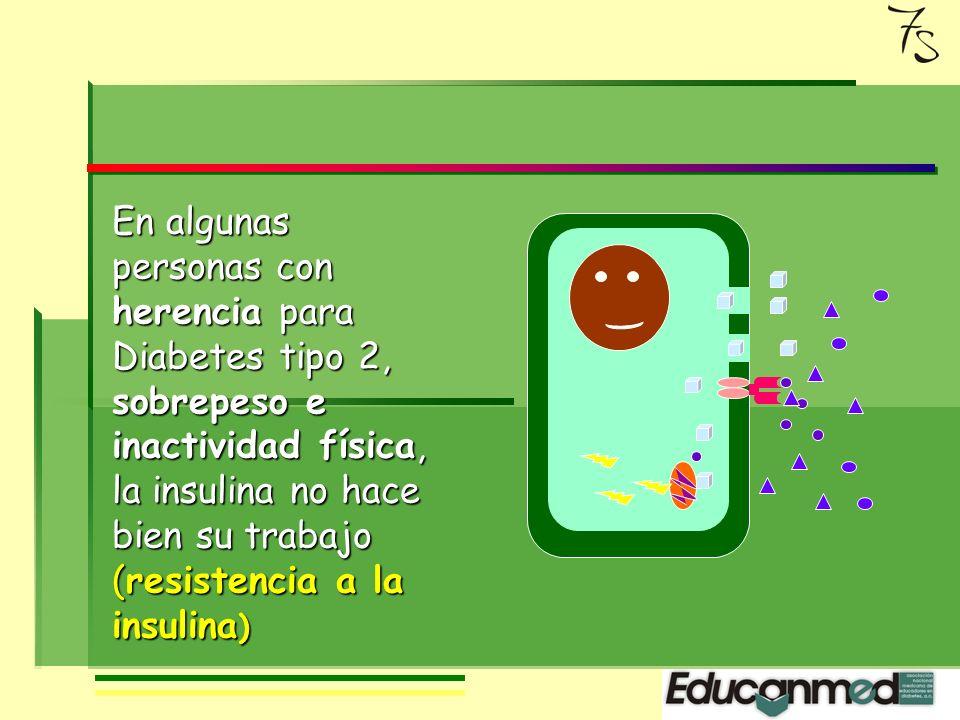 Normalmente se produce Insulina en respuesta a la elevación de glucosa en la sangre, en cantidad suficiente para mantenerla en límite correcto