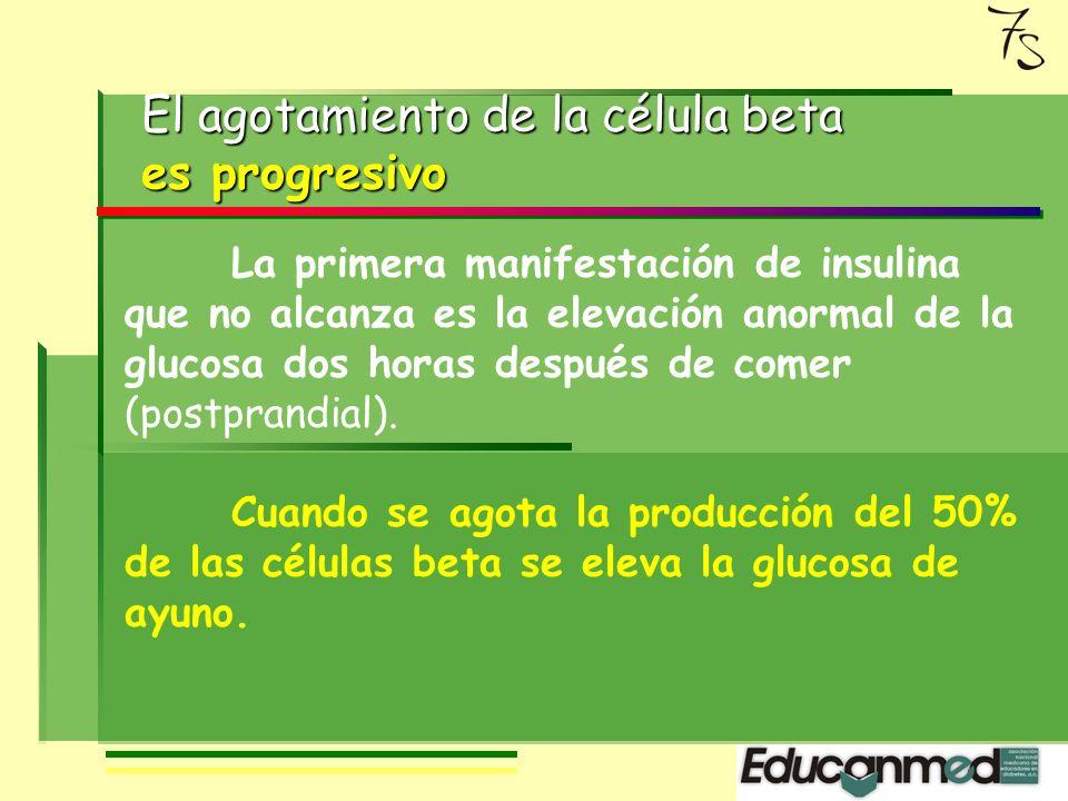 La hiperinsulinemia se puede mantener durante algún tiempo, pero llega el momento en que la capacidad de fabricar insulina de la célula beta se agota.