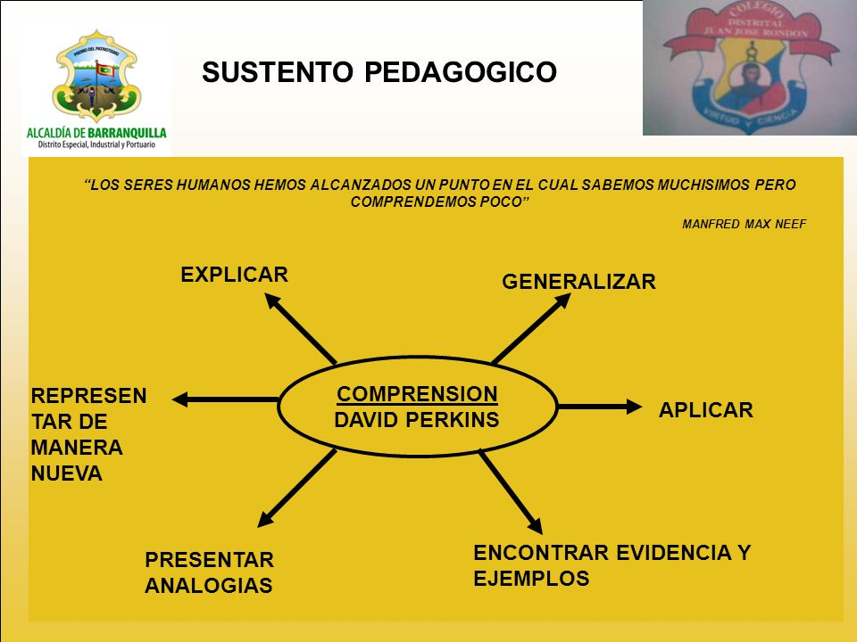 SUSTENTO PEDAGOGICO LOS SERES HUMANOS HEMOS ALCANZADOS UN PUNTO EN EL CUAL SABEMOS MUCHISIMOS PERO COMPRENDEMOS POCO MANFRED MAX NEEF COMPRENSION DAVID PERKINS EXPLICAR GENERALIZAR APLICAR ENCONTRAR EVIDENCIA Y EJEMPLOS PRESENTAR ANALOGIAS REPRESEN TAR DE MANERA NUEVA