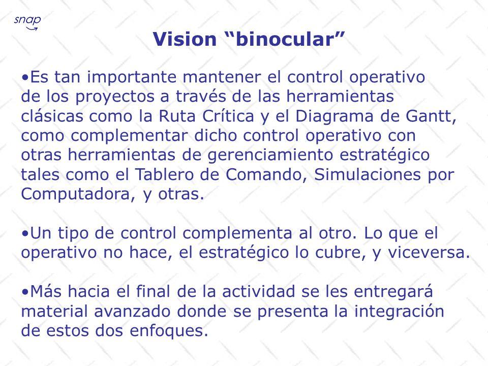 Vision binocular Es tan importante mantener el control operativo de los proyectos a través de las herramientas clásicas como la Ruta Crítica y el Diag