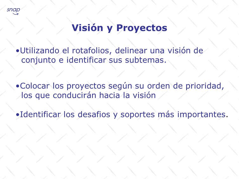 Utilizando el rotafolios, delinear una visión de conjunto e identificar sus subtemas. Colocar los proyectos según su orden de prioridad, los que condu