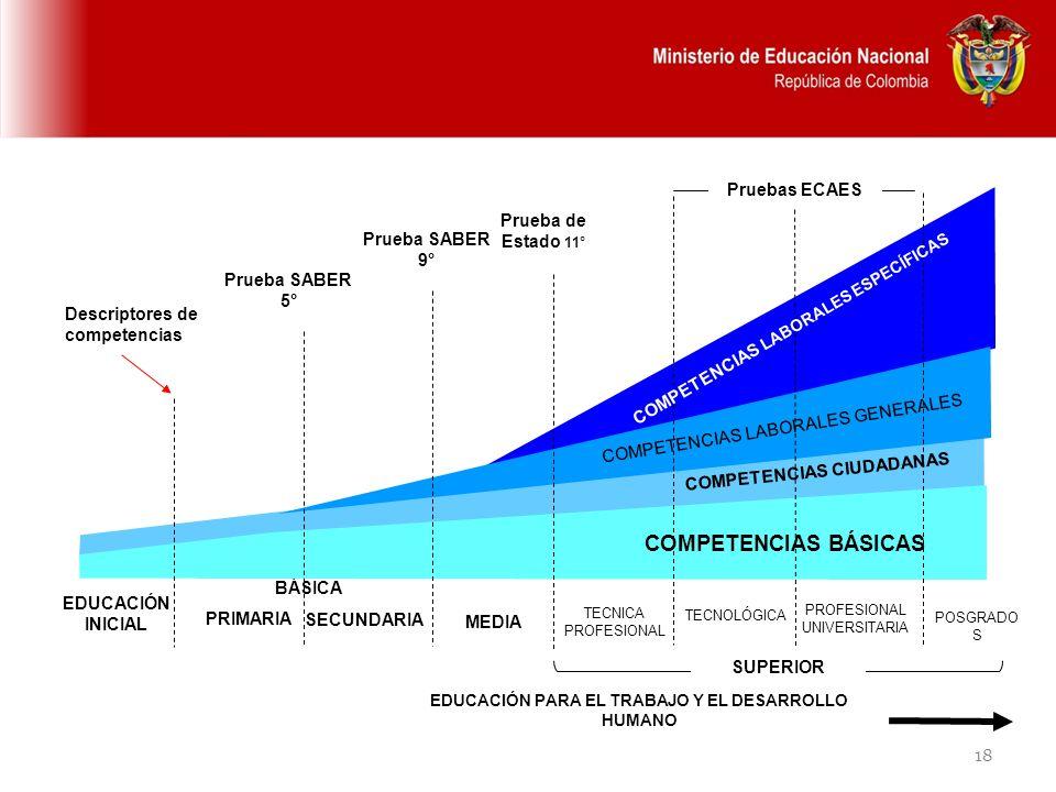 18 EDUCACIÓN PARA EL TRABAJO Y EL DESARROLLO HUMANO BÁSICA SECUNDARIA MEDIA TECNICA PROFESIONAL TECNOLÓGICA PROFESIONAL UNIVERSITARIA COMPETENCIAS BÁS