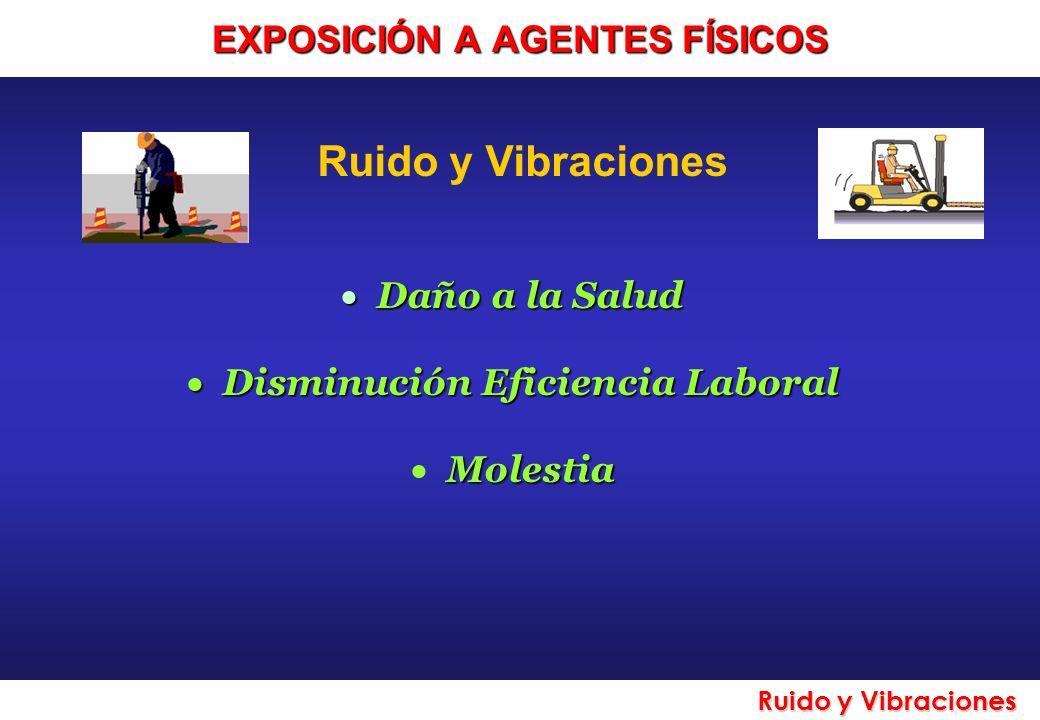 Ruido y Vibraciones Daño a la Salud Daño a la Salud Disminución Eficiencia Laboral Disminución Eficiencia Laboral Molestia EXPOSICIÓN A AGENTES FÍSICO