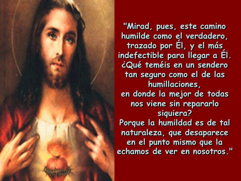 Mirad, pues, este camino humilde como el verdadero, trazado por Él, y el más indefectible para llegar a Él.