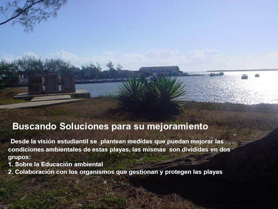 Buscando Soluciones para su mejoramiento Desde la visión estudiantil se plantean medidas que puedan mejorar las condiciones ambientales de estas playas, las mismas son divididas en dos grupos: 1.