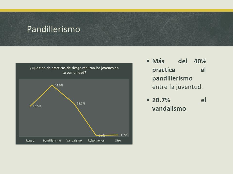 Pandillerismo Más del 40% practica el pandillerismo entre la juventud. 28.7% el vandalismo.