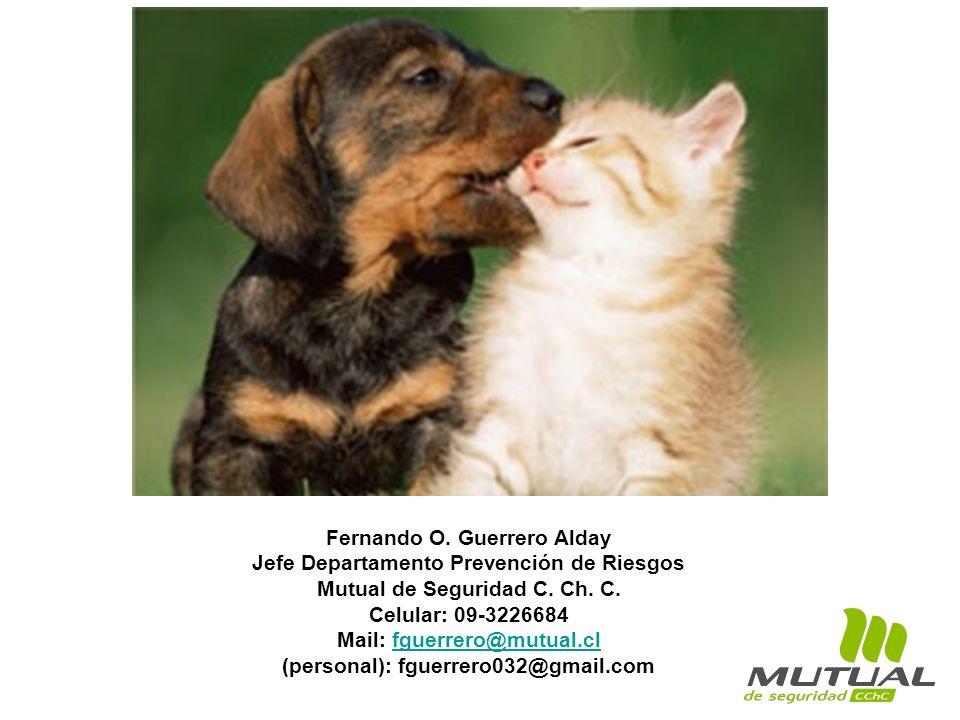 Fernando O. Guerrero Alday Jefe Departamento Prevención de Riesgos Mutual de Seguridad C. Ch. C. Celular: 09-3226684 Mail: fguerrero@mutual.clfguerrer