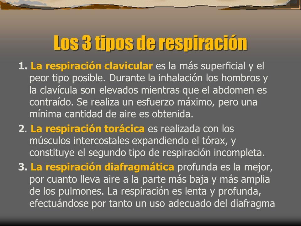 Los 3 tipos de respiración 1.