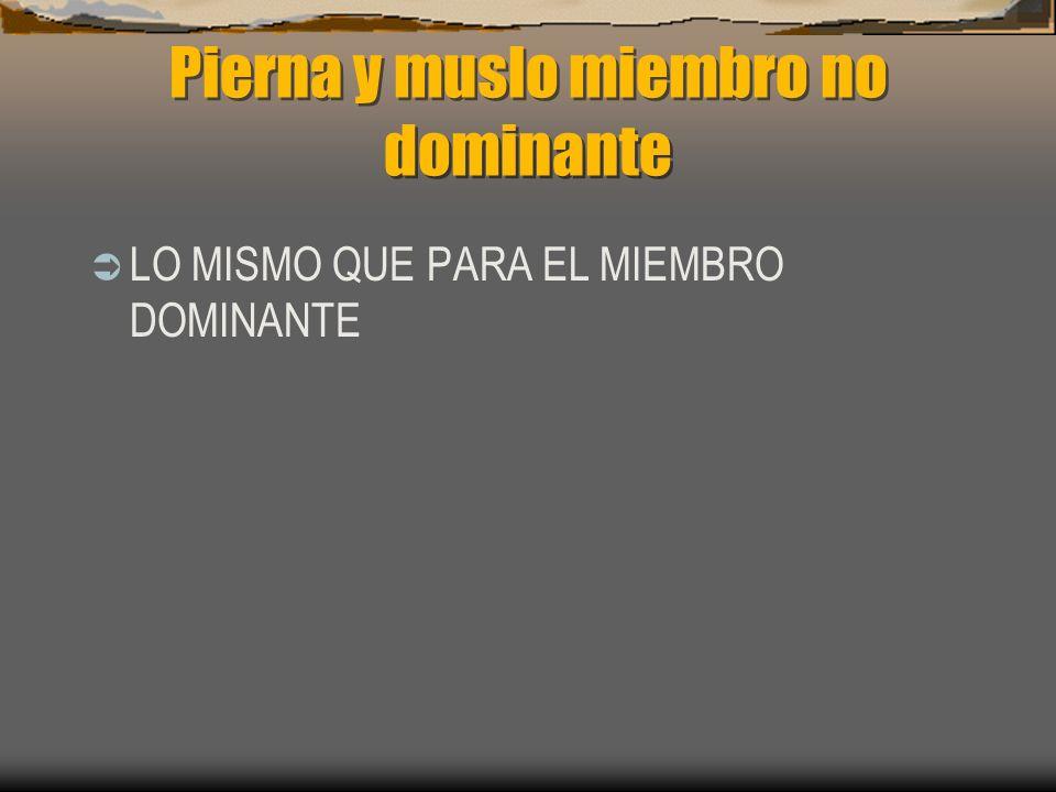 Pierna y muslo miembro no dominante LO MISMO QUE PARA EL MIEMBRO DOMINANTE
