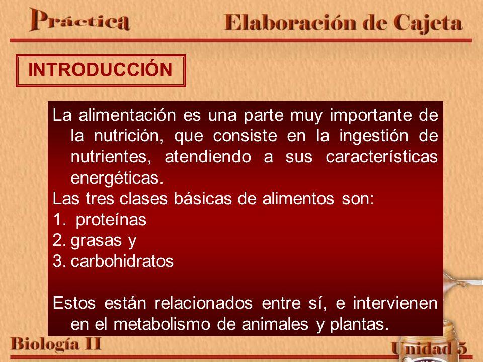 La alimentación es una parte muy importante de la nutrición, que consiste en la ingestión de nutrientes, atendiendo a sus características energéticas.