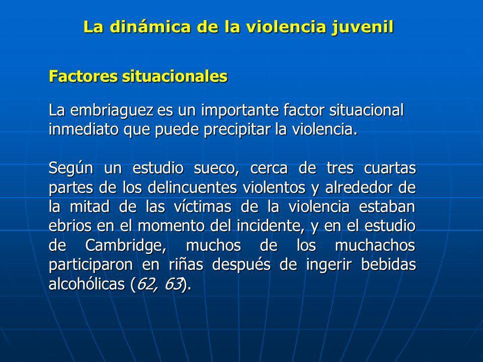 La dinámica de la violencia juvenil Factores situacionales La embriaguez es un importante factor situacional inmediato que puede precipitar la violenc