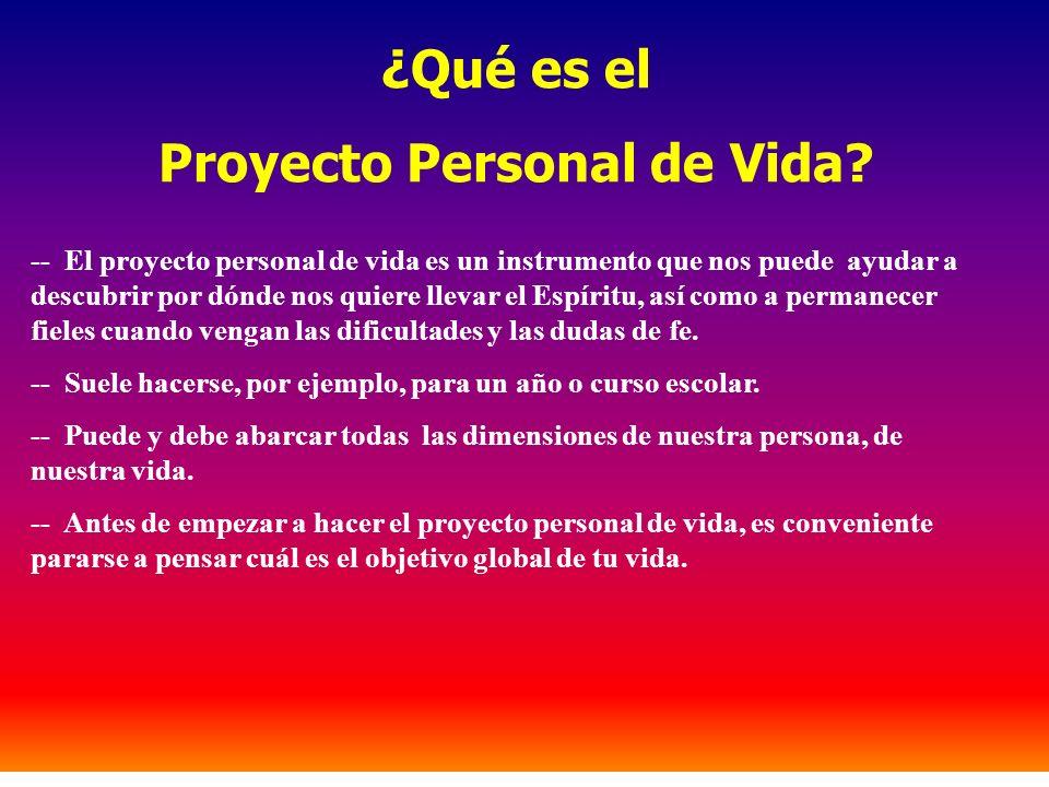 ¿Qué es el Proyecto Personal de Vida? -- El proyecto personal de vida es un instrumento que nos puede ayudar a descubrir por dónde nos quiere llevar e