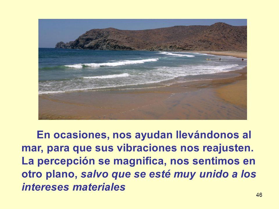 46 En ocasiones, nos ayudan llevándonos al mar, para que sus vibraciones nos reajusten. La percepción se magnifica, nos sentimos en otro plano, salvo