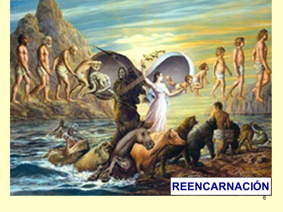 6 REENCARNACIÓN