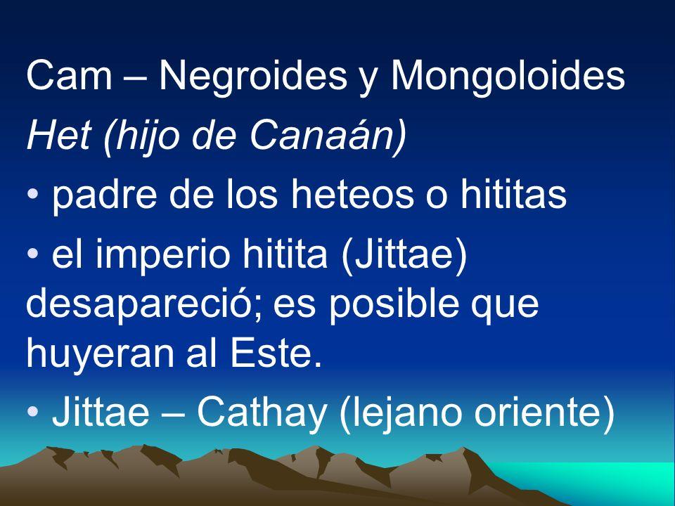 Cam – Negroides y Mongoloides Het (hijo de Canaán) padre de los heteos o hititas el imperio hitita (Jittae) desapareció; es posible que huyeran al Est