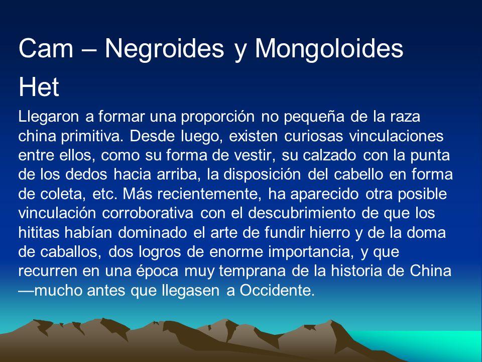 Cam – Negroides y Mongoloides Het Llegaron a formar una proporción no pequeña de la raza china primitiva. Desde luego, existen curiosas vinculaciones