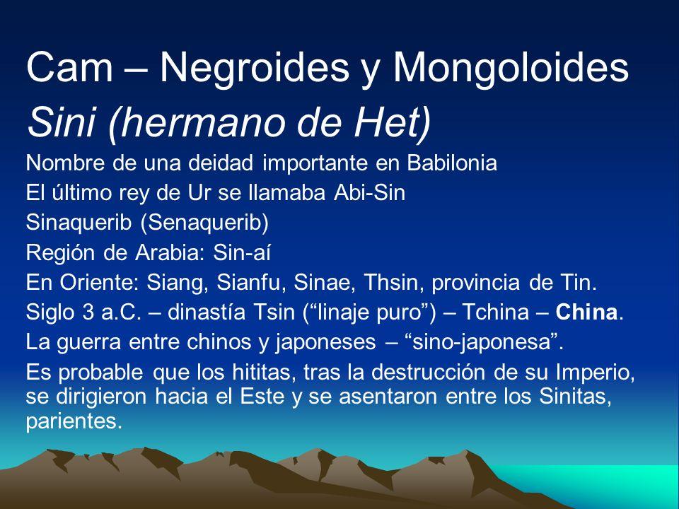 Cam – Negroides y Mongoloides Sini (hermano de Het) Nombre de una deidad importante en Babilonia El último rey de Ur se llamaba Abi-Sin Sinaquerib (Se