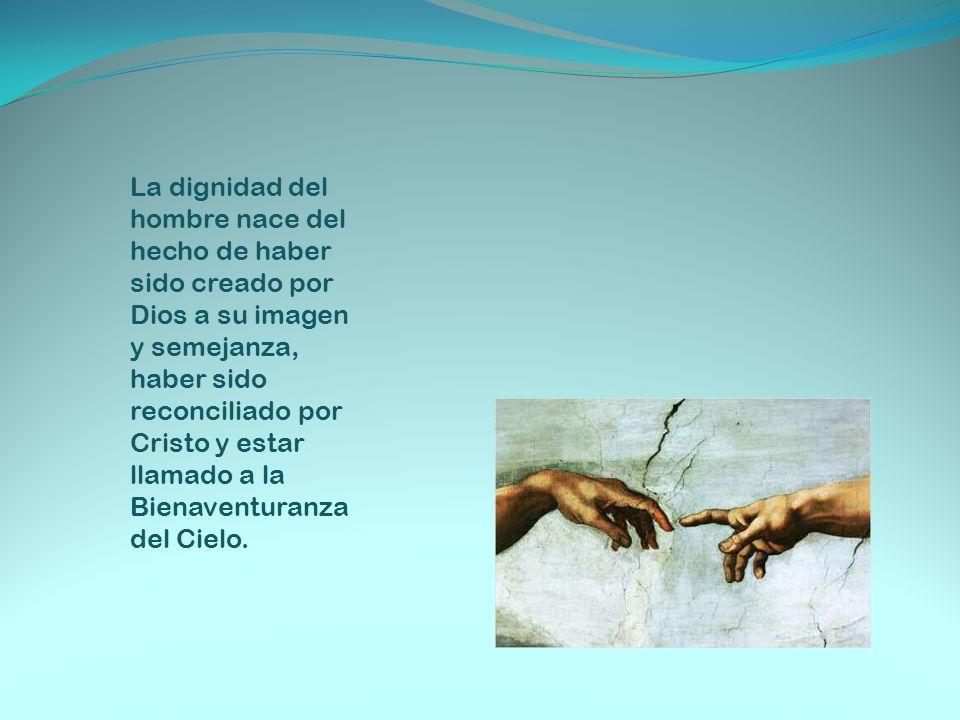 La dignidad del hombre nace del hecho de haber sido creado por Dios a su imagen y semejanza, haber sido reconciliado por Cristo y estar llamado a la B