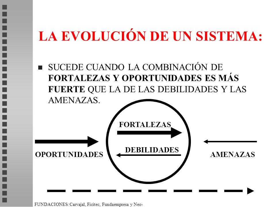 FUNDACIONES: Carvajal, Ficitec, Fundaempresa y Neo- Humanista. LA EVOLUCIÓN DE UN SISTEMA: n SUCEDE CUANDO LA COMBINACIÓN DE FORTALEZAS Y OPORTUNIDADE