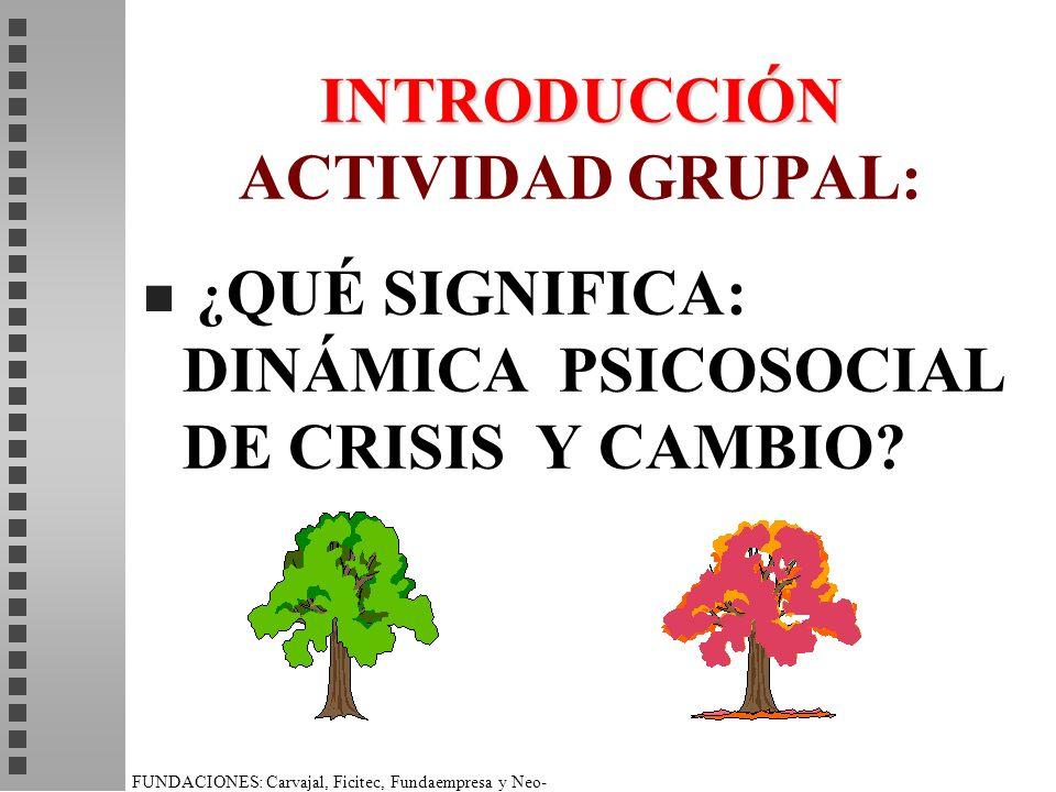 INTRODUCCIÓN INTRODUCCIÓN ACTIVIDAD GRUPAL: n ¿ QUÉ SIGNIFICA: DINÁMICA PSICOSOCIAL DE CRISIS Y CAMBIO?