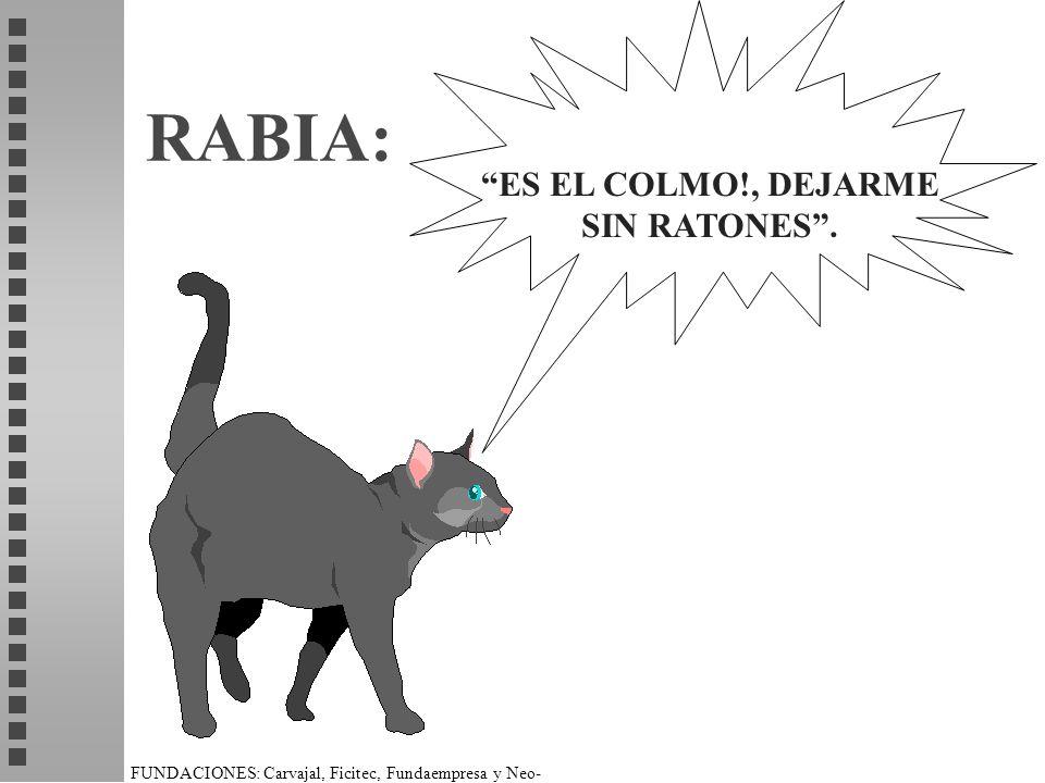 FUNDACIONES: Carvajal, Ficitec, Fundaempresa y Neo- Humanista. RABIA: ES EL COLMO!, DEJARME SIN RATONES.