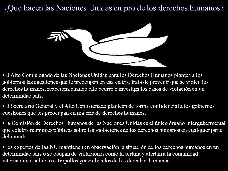 ¿Qué hacen las Naciones Unidas en pro de los derechos humanos? El Alto Comisionado de las Naciones Unidas para los Derechos Humanos plantea a los gobi