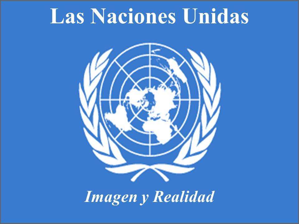Son una singular organización internacional de 191 Estados soberanos.